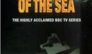 [国英双语]深海探险纪录片:BBC-《海底世界揭密》全6集(中英字幕)下载