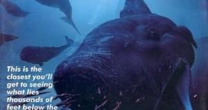 [英语中英字幕]深海探秘纪录片:BBC-海洋奥德赛 Ocean Odyssey 全1集