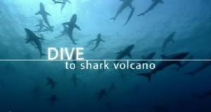 [英语中英字幕]海底探秘纪录片:bbc-2005.探潜鲨鱼火山 BBC Dive To Shark Volcano 全1集