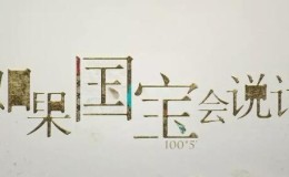 文物探秘纪录片:如果国宝会说话 第一季 全25集 1080P超清下载