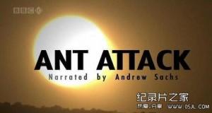 [英语中英字幕]动物世界纪录片:bbc-自然世界:蚂蚁攻击 Natural World: Ant Attack (2006)全1集 高清下载
