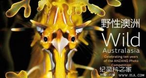 [英语中英字幕]人文地理纪录片:BBC-野性非洲 Wild Africa 全6集 标清下载