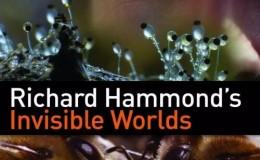 [英语中字]科学探秘纪录片:BBC-理查德·哈蒙德:看不见的世界visible Worlds 全3集