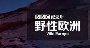 [英语中文字幕]人文地理纪录片:bbc野性欧洲 Wild Europe 全4集