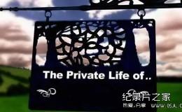 [英语中字]有趣的动物世界纪录片:BBC家禽家畜的私生活 全3集 高清