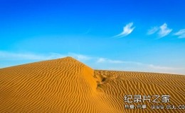 [英语中字]Discovery纪录片:印度塔尔大沙漠THAR India's great desert 全1集 高清下载
