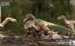 [英语中字]动物世界纪录片:BBC与恐龙同行特辑-镰刀龙秘史 全1集