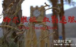 [英语中英双字]人物传记纪录片:bbc西尔维娅 血影迷踪 Sylvia: Tracing Blood 全1集