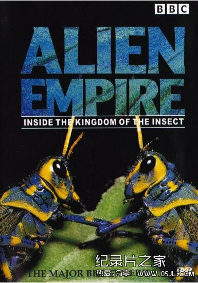 [国语中字]探索昆虫的奇妙世界:BBC纪录片-昆虫帝国 全6集下载图片 No.1