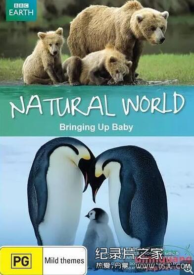 [英语中英字幕]动物世界纪录片:BBC 自然世界 动物母性 Bringing Up Baby 全1集图片 No.1