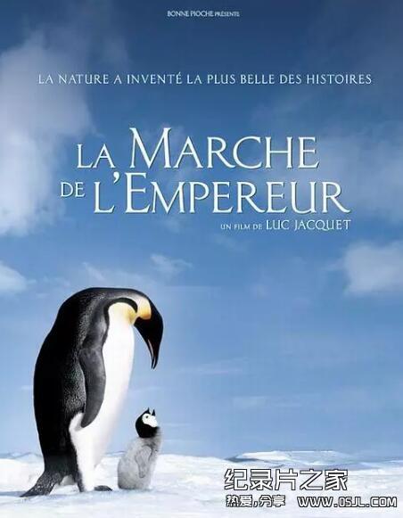 [法语中字]动物世界纪录片:帝企鹅日记 La marche de l'empereur (2005)全1集下载图片 No.1