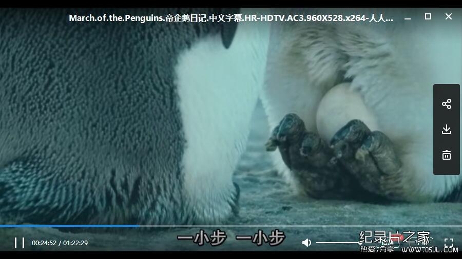 [法语中字]动物世界纪录片:帝企鹅日记 La marche de l'empereur (2005)全1集下载图片 No.3