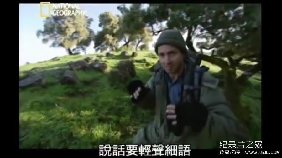 [英语中字]动物世界纪录片:国家地理-爱上狮尾狒 Cliffhangers 全3集 下载图片 No.3