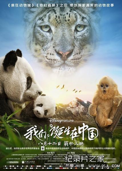 [国英双语]动物世界纪录片:2016.我们诞生在中国 Born.in.China 全1集 带中文字幕 高清720P下载图片 No.1