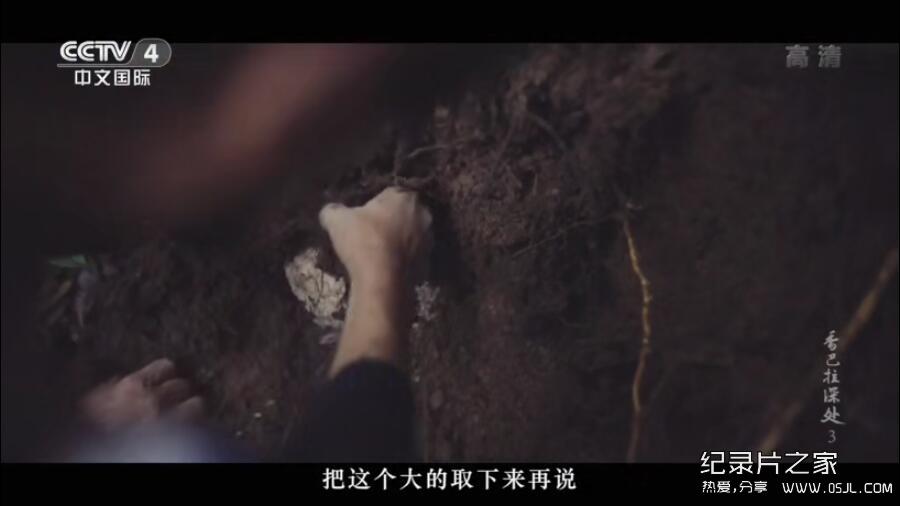 [国语中字]央视纪录片:人文地理-香巴拉深处 (2018)全5集 超清1080P下载图片 No.4