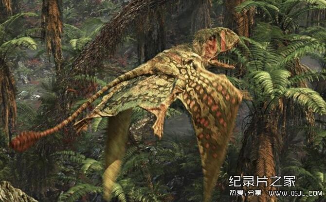 [英语中英双字]探索频道纪录片:飞行巨兽 Flying Monsters 3D with David Attenborough 高清720P下载图片 No.3