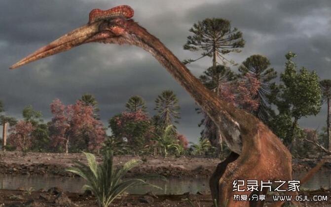[英语中英双字]探索频道纪录片:飞行巨兽 Flying Monsters 3D with David Attenborough 高清720P下载图片 No.4