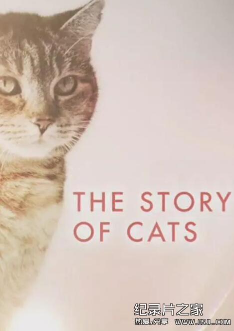 [英语中字]动物世界纪录片:bbc-猫科动物的故事 The Story of Cats (2016)全3集 高清720P下载图片 No.1