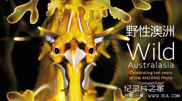 [英语中英字幕]人文地理纪录片:BBC-野性非洲 Wild Africa 全6集 标清下载图片 No.1