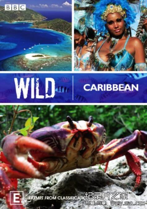 [英语中英字幕]人文地理纪录片:BBC野性加勒比 Wild Caribbean 全4集图片