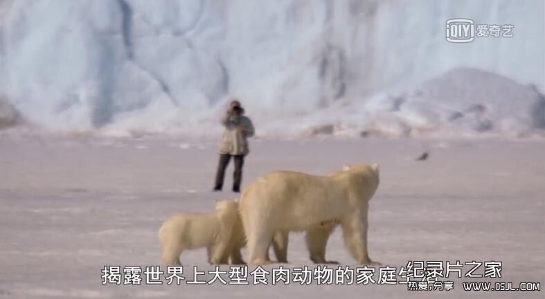[英语中字]动物世界纪录片:BBC-我和北极熊一家 The Polar Bear Family & Me 全3集图片 No.2