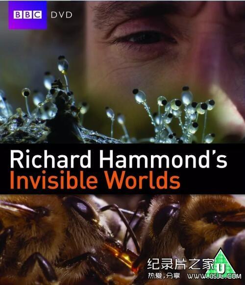 [英语中字]科学探秘纪录片:BBC-理查德·哈蒙德:看不见的世界visible Worlds 全3集图片