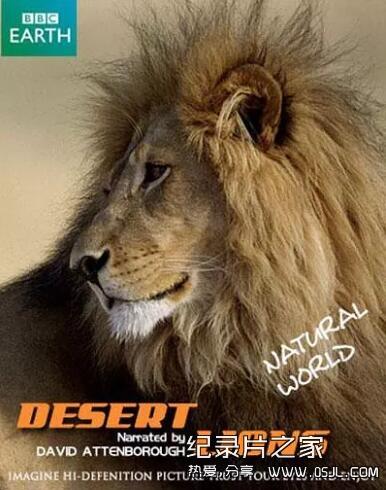 [英语中字]动物世界纪录片:行星地球特别版-沙漠狮Planet Earth Bonus Desert Lions 全1集图片