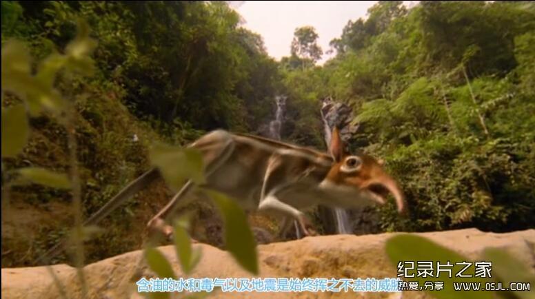 [英语中字+国语]动物世界纪录片:BBC-与猛兽同行 Walking with Beasts 全6集图片 No.2