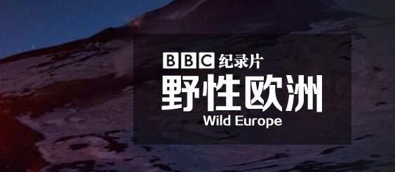 [英语中文字幕]人文地理纪录片:bbc野性欧洲 Wild Europe 全4集图片