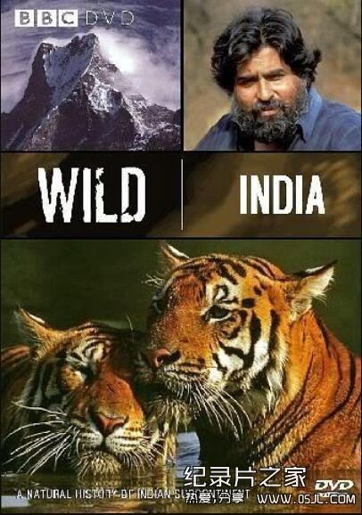 [英语中字]人文地理纪录片:bbc野性印度(虎的王国) Wild India (1997)全6集图片