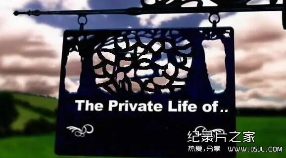 [英语中字]有趣的动物世界纪录片:BBC家禽家畜的私生活 全3集 高清图片