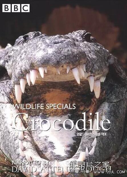 [英语中字]动物世界纪录片:BBC-野生生物特辑 Wildlife Specials 全11辑图片 No.2