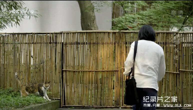 [国语中字]央视小清新文艺纪录片:书迷【4集1080P】图片 No.2