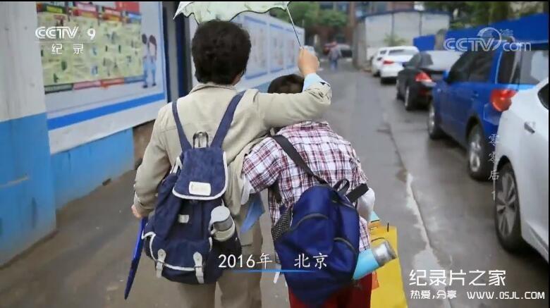 央视纪录片:《零零后》讲述一群中国零零后孩子的成长故事 全5集图片 No.2