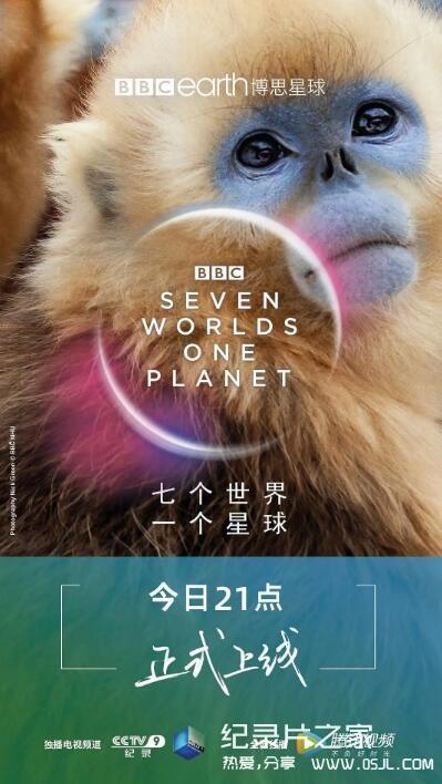 [英语中英字幕]BBC 2019年度纪录片神作:七个世界一个地球 全7集 高清,豆瓣9.8分图片